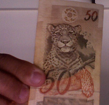 Brazil's money… with jaguars!